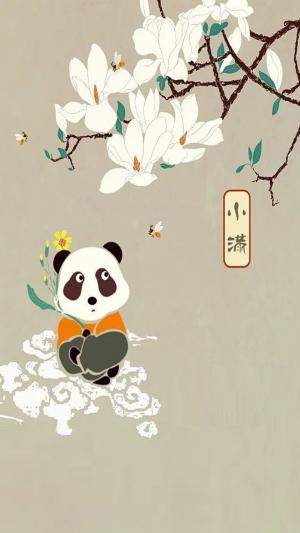 小满节气中国风熊猫插画手机壁纸
