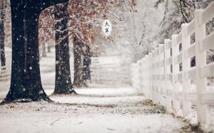 二十四节气之大寒雪景图片