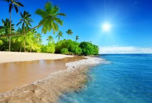 蔚蓝的大海,阳光,棕榈树,沙滩,海岸,海洋,天空,5K风景壁纸