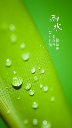 二十四节气雨水