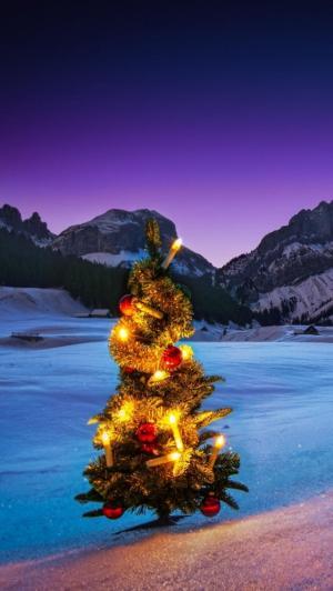 平安夜户外圣诞树图片
