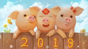 2019幸运猪图片新年吉祥壁纸